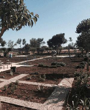 Alquiler maquinaria jardiner a gomez oviedo rental store for Jardineria santander