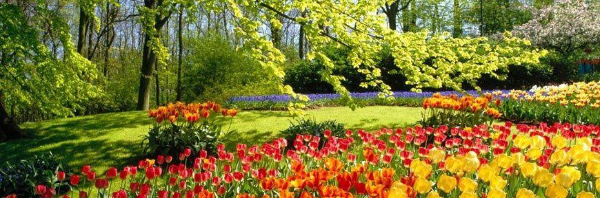 Alquiler maquinaria jardiner a gomez oviedo rental store for Jardineria cantabria